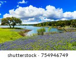beautiful bluebonnets along a... | Shutterstock . vector #754946749