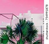 tropical urban minimal art.... | Shutterstock . vector #754991878