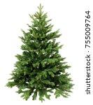 green pine  christmas tree