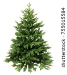 green pine  christmas tree... | Shutterstock . vector #755015584
