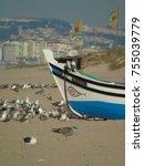 detail of a flock of seagulls...   Shutterstock . vector #755039779