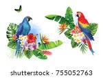 tropical summer arrangements... | Shutterstock .eps vector #755052763