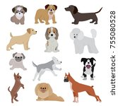 dog vector cute cartoon puppy... | Shutterstock .eps vector #755080528