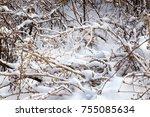 snowfall. winter landscape. dry ... | Shutterstock . vector #755085634