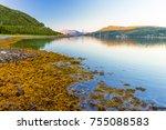 bridge to lofoten islands  ...   Shutterstock . vector #755088583