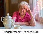 portrait of elderly woman... | Shutterstock . vector #755090038