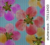 illustration. cross stitch....   Shutterstock . vector #755113420