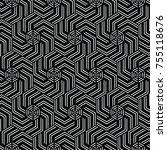black and white vector pattern...   Shutterstock .eps vector #755118676