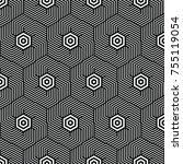 black and white vector pattern... | Shutterstock .eps vector #755119054