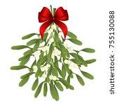 mistletoe. vector illustration... | Shutterstock .eps vector #755130088