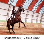 a sweet girl jockey rides a... | Shutterstock . vector #755156800