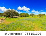 beautiful texas hill country... | Shutterstock . vector #755161303