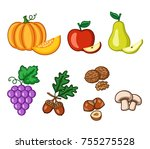 set of autumn fruits clipart ... | Shutterstock .eps vector #755275528