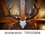 Horns And A Deer Skull Hang...