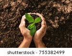 hand holding seed tree in bag... | Shutterstock . vector #755382499