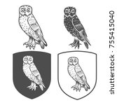 heraldic shields with owl on a... | Shutterstock . vector #755415040