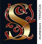 capital letter s. large letter. ...   Shutterstock .eps vector #755425126