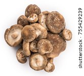 shiitake mushrooms isolated on... | Shutterstock . vector #755429239