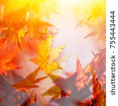 abstract autumn leaves | Shutterstock . vector #755443444