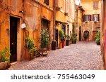 magical mediterranean street...   Shutterstock . vector #755463049