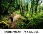 hiking in nepal jungle forest | Shutterstock . vector #755537656