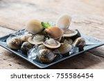 fresh enamel venus shell ... | Shutterstock . vector #755586454