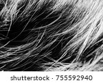 black white wool texture... | Shutterstock . vector #755592940