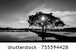 black and white of  tree and... | Shutterstock . vector #755594428