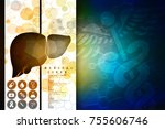 realistic human liver 2d... | Shutterstock . vector #755606746