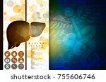 realistic human liver 2d... | Shutterstock . vector #755606746