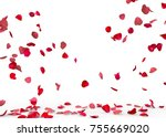Stock photo rose petals fall to the floor isolated background 755669020