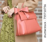 a bag in the hands of a woman.... | Shutterstock . vector #755710756