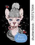 christmas card. sphynx cat in a ... | Shutterstock .eps vector #755717044
