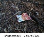 ten euros banknote lying on the ... | Shutterstock . vector #755753128