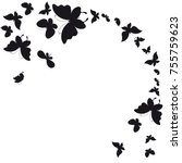 black butterfly  isolated on a... | Shutterstock .eps vector #755759623