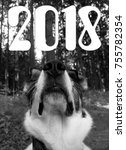 on a nose new year. 2018 is the ...   Shutterstock . vector #755782354
