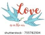 swift love birds vector hand... | Shutterstock .eps vector #755782504