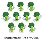 a vector pack of broccoli... | Shutterstock .eps vector #755797906