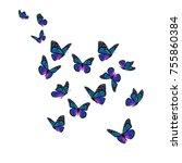 beautiful colorful monarch... | Shutterstock . vector #755860384