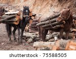 Two Horses With Wood On Their...