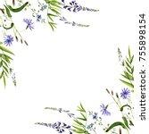 watercolor drawing wild plants... | Shutterstock . vector #755898154