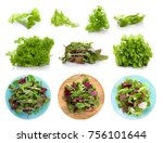 collage of salad mix on white... | Shutterstock . vector #756101644