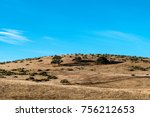 Dry Foothills With Trees And...
