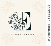 vector graphic elegant logotype ... | Shutterstock .eps vector #756213778