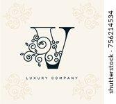 vector graphic elegant logotype ... | Shutterstock .eps vector #756214534