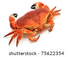 Prepared crab - stock photo