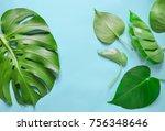 monstera leaves flat lay...   Shutterstock . vector #756348646