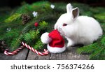 Stock photo new year s rabbit and red hat 756374266