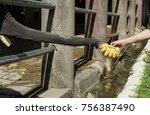thai elephants get bananas from ...   Shutterstock . vector #756387490