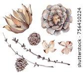 Watercolor Set Of  Botanical...
